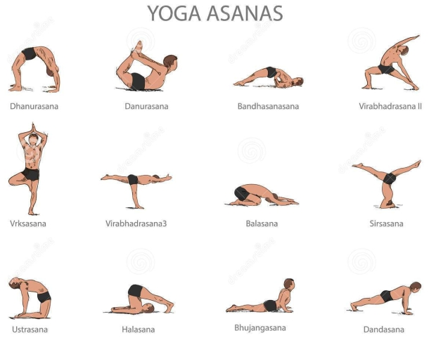 vector-set-yoga-poses-isolated-white-background-human-body-stretching-positions-asana-concept-68444926